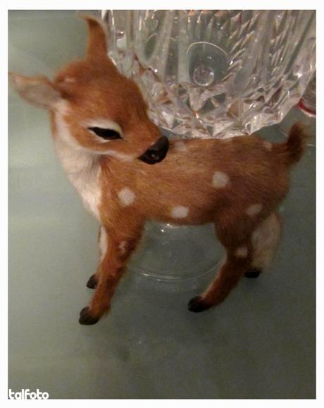 Deer + Champagne